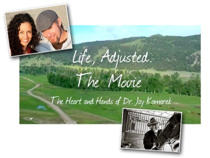 Life Adjusted the Movie - the heart and hands of dr jay komarek