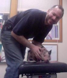 Dr. Lamar adjusts Tetley the pig.