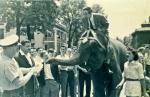 BJ on elephant 1956-7 BradyStreet